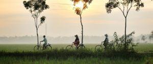 סיפור זן על 5 תלמידים על אופניים